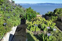 Alcatraz Island, San Francisco, United States
