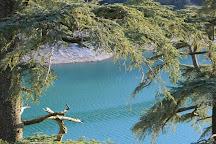 Aguelmam Azigza National Park, Khenifra, Morocco