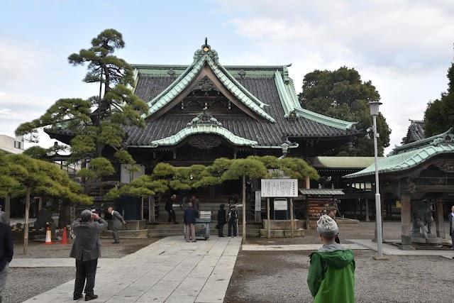 Zuiryu-no-matsu Pine Tree