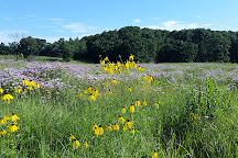 Hyland Lake Park Reserve, Bloomington, United States