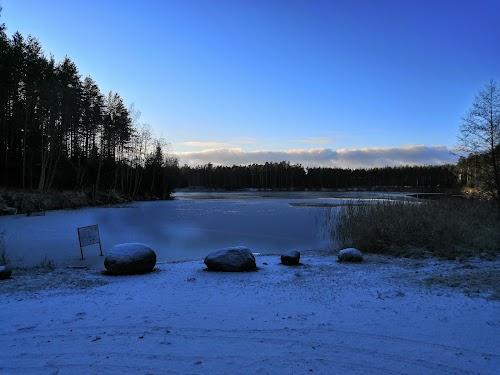 Seljametsa järv