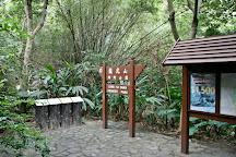 Lung Fu Shan Country Park, Hong Kong, China