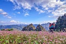 Number 1 Travel Vietnam, Hanoi, Vietnam