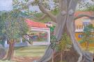 Silk Cotton Grove & Art Gallery