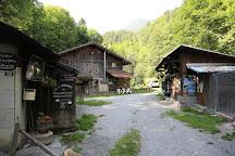 Elevage de Saint Bernard du pays du Mont-Blanc, Les Houches, France