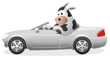 Moo Loans - Car Title Loans Payday Loans Picture