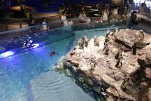 Sumida Aquarium, Sumida, Japan