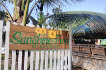 Sunshine Farm Philippines, Tiaong, Philippines