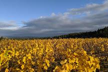 Ardiri Winery and Vineyards, Cornelius, United States