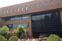 Kyoto University, Kyoto, Japan