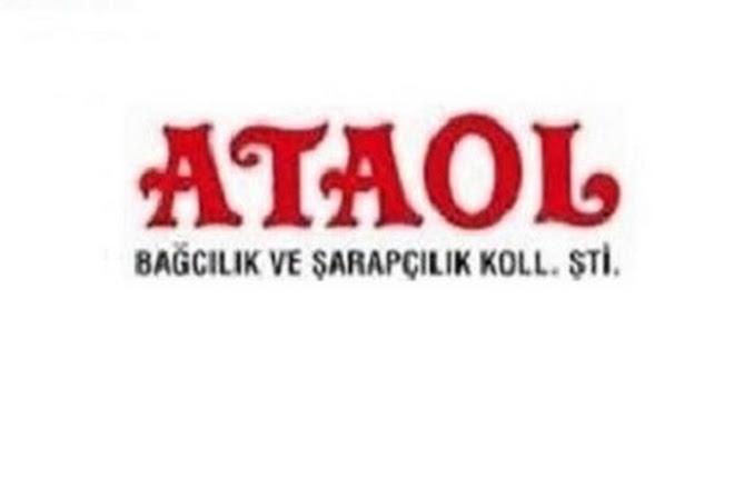 Ataol Saraplari, Canakkale, Turkey