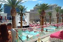 Party Tours, Las Vegas, United States