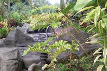 Titoku Hot Springs, La Fortuna de San Carlos, Costa Rica