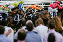 Caulfield Racecourse, Caulfield, Australia