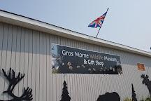 Gros Morne Wildlife Museum, Rocky Harbour, Canada
