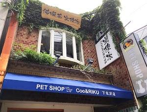 猫カフェ 猫喫茶 空陸家 下北沢店