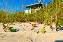 North Jetty Beach, Casey Key, United States