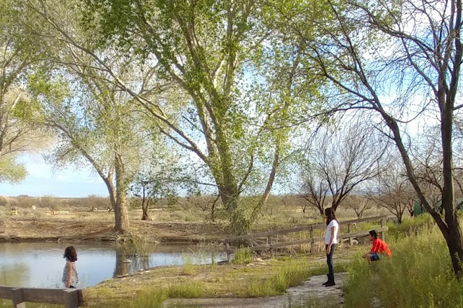 Discovery Park, Safford, United States