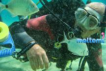 Meltemi Dive Centre, Ios, Greece