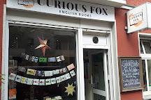 Curious Fox, Berlin, Germany