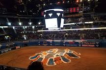Bridgestone Arena, Nashville, United States
