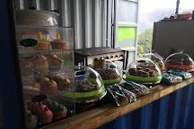 Freeman's Organic Farm, Currumbin, Australia