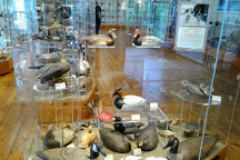 Havre de Grace Decoy Museum, Havre de Grace, United States