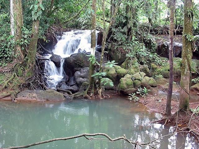 Parque Nacional Braulio Carillo