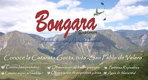 BONGARÁ EXPLORER 9