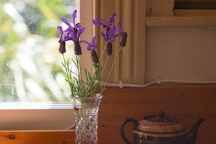 Couldrey House & Garden, Waiwera, New Zealand