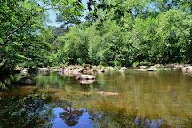 White Pines Nature Preserve, Sanford, United States