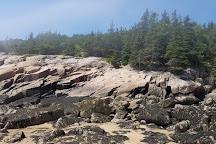 Sand Beach, Acadia National Park, United States