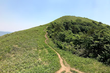 Mt. Shinnyuzan, Akiota-cho, Japan