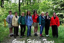 All Earth Eco Tours, Friendsville, United States