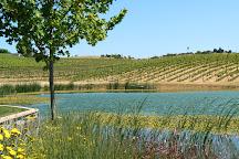 TH Estate Wines, Paso Robles, United States