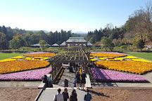 Biltmore Gardens, Asheville, United States