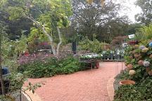Cloudehill Nursery and Gardens, Olinda, Australia
