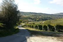 Cascina Sot, Monforte d'Alba, Italy