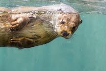 AQUA Aquarium & Wildlife Park, Silkeborg, Denmark