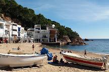 La playa de Tamariu, Tamariu, Spain
