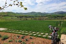 Monticello Wine Tour & Coach Co., Charlottesville, United States