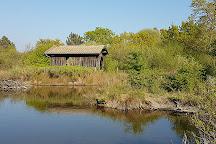 Réserve Ornithologique du Teich, Le Teich, France