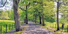Pollok Country Park glasgow