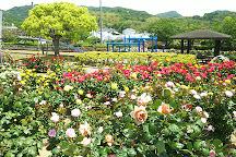Yoshiumi Rose Park, Imabari, Japan