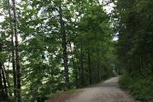 Offensee, Ebensee, Austria