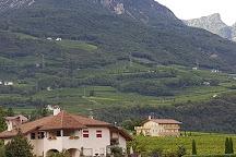Cantina Tramin, Termeno, Italy