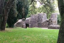 Maynooth Castle, Maynooth, Ireland