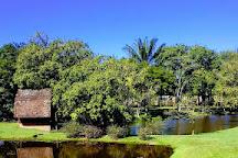 Timbo Botanical Garden, Timbo, Brazil