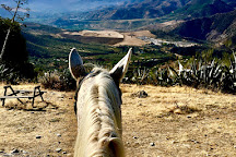 Horse Riding El Chorro, El Chorro, Spain