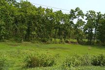 Bhawal National Park, Gazipur, Bangladesh